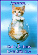 Cat's Kittens 'Love This Site Award', 'Another Cutey'