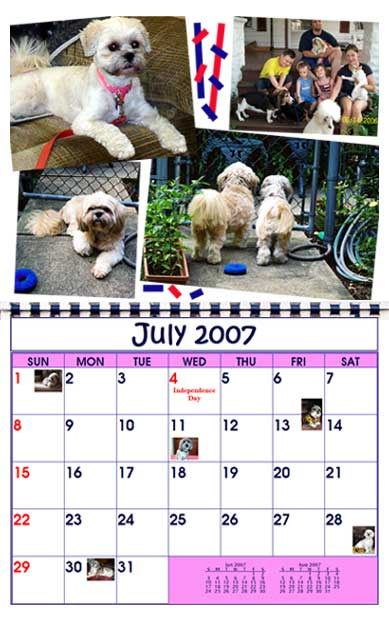 BMK Designs Calendar Lhasa Rescue Dogs