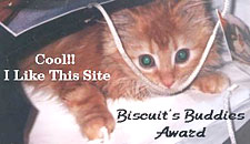Biscuits Award - what a cutey!