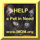 'IMOM' Help A Pet In Need