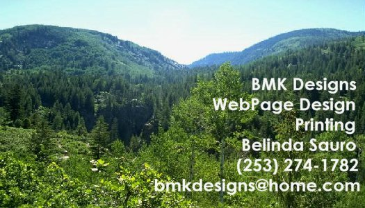 BMK Designs Business Card - Use Your Photo