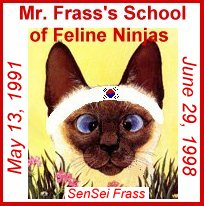 Mr.Frass Ninja Warrior School